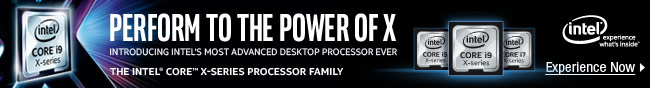 INTEL - PERFORM TO THE POWER OF X