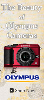 The Beauty of Olympus Cameras