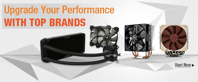 Upgrade Your Performance with Top Brands