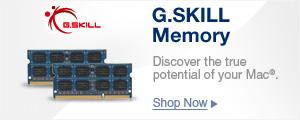 G.SKILL Memory