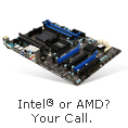 Intel or AMD