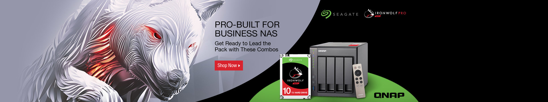 PRO-BUILT FOR BUSINESS NAS